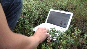 Kannettava tietokone metsässä marjavarpujen päällä.
