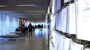 Opiskelijoita Joensuun yliopiston käytävällä, jonka seinällä tenttituloslistoja.