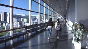 Kaksi opiskelijaa kävelee Tampereen yliopiston käytävällä.