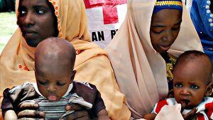Nigerialaislapset odottavat pääsyä rokotukseen