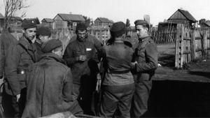Itäkarjalaiset siviilimiehet tulkkaavat vankia suomalaisille sotilaille Aunuksessa Jatkosodan aikaan 1941.