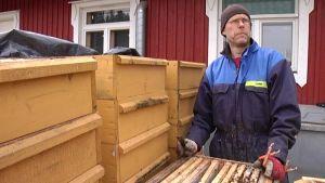 Mies tutkii tyhjiä mehiläispesiä.