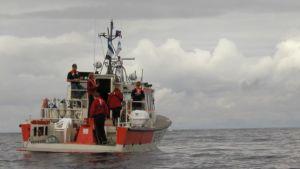 Meripelastusyhdistys Sydvästin Paroc-alus on valmistunut vuonna 2002.