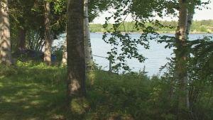 Kauniit jokimaisevat viehättävät kesäisin.