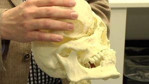 Tutkijan kädessä biomateriaalilla tehtyä luuta.