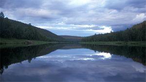 Tyyni Ivalojoki. Pilvet heijastuvat veden pintaan. Taustalla metsä- ja tunturimaisemaa.