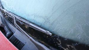 Auton tuulilasi jäässä