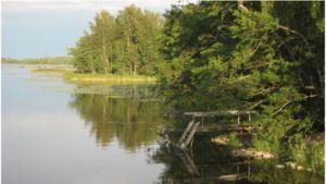 Keväinen maisema Suomessa veden äärellä.