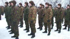 Alokkaat seisovat talvisella kentällä.