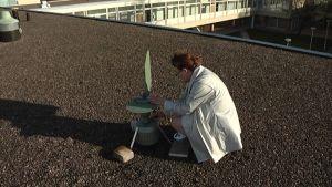 Erikoistutkija Anna-Mari Pessi ottaa siitepölypitoisuuksia talteen.