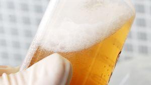 Lähikuva oluesta putkilossa.