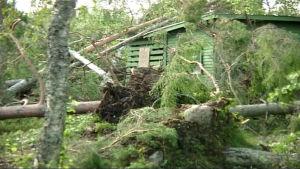 Trombi pyyhkäisi elokuussa 2004 Kontiolahdella aiheuttaen tuhoja yli 20 kilometrin matkalla.