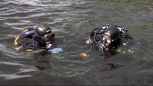 Kaksi sukeltajaa Kallavedellä