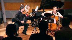 Orkesteri soittaa Meidän festivaali 2011 -tapahtumassa