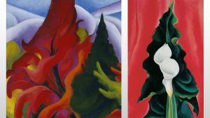 Kaksi O'Keeffen kukkamaalausta.