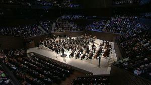 Orkesteri soittamassa Musiikkitalon suuressa salissa.