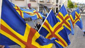 Juhlakulkueessa kannetaan Ahvenanmaan lippuja.