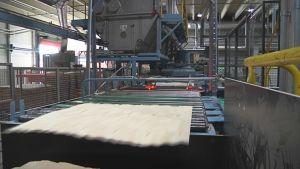 Vanerilevy liukuu tehtaalla rullakolla.