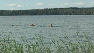 kaksi lasta uimassa Kuorinka järvellä.