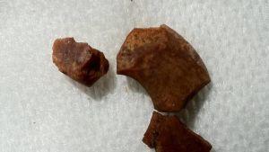 Kierikistä löytynyt meripihkakorun palanen.
