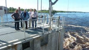 Ely-keskuksen kalatalousosaston väkeä seisoskelee Isohaaran uuden kalatien sulutusaltaan katolla. Taustalla Kemijoki.