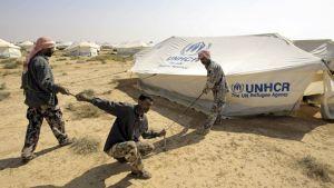 Kolme miestä rakentamassa telttaa aavikolle.