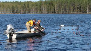 kalastus paunetin viritys roskakalastus