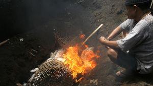 Työntekijä poltti kanojen ruhoja jotka olivat mahdollisesti altistuneet lintuinfluenssaviirukselle Denpansarissa Indonesiassa 26. huhtikuuta 2012.