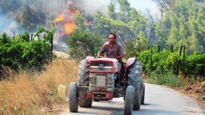 Kreikkalainen maanviljelijä pakenee traktorilla maastopaloa Veliniatikassa.