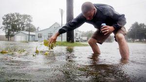 Mies keräää myrskyn tuomia roskia sadevesikaivon päältä Mississippin Gulfportissa.