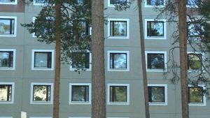 Kaukovainion asunnoista 90 % on kerrostaloissa