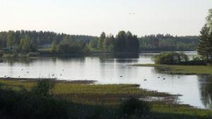 Vihteljärven maisema Kankaanpäässä.