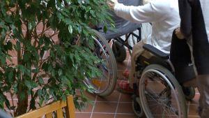 Hoitaja työntää kahta vanhusta pyörätuolissa.