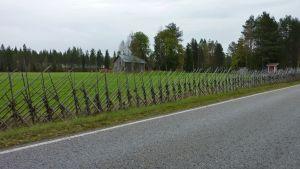 Heinäseipäistä tehty aita pellon reunalla