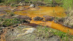 geggamoija, ällömönjä, valumavesi, saaste
