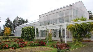 Botania, puutarha, syksy