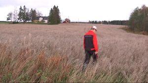 Viljelijä kävelee pellolla