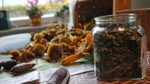Kuivatut sienet laitetaan lasipurkkiin säilöön.