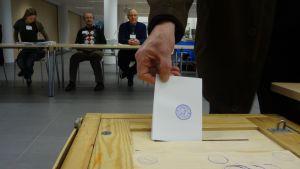 Mies panee äänestyslipun uurnaan.