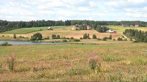 Asutus polveilee molemmin puolin Hyypänjokilaaksoa.
