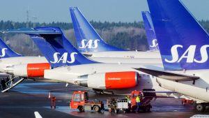 SAS:n koneita Arlandan lentokentällä Tukholmassa.