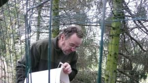 Henry Laine ruokkii lintuja.