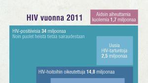 Maailmassa oli viime vuonna 34 miljoonaa HIV-positiivista.