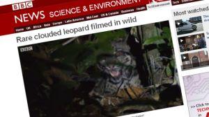 Kuvarevinnäinen BBC:n nettisivuilta.