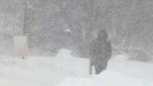 Jalankulkija lumipyryssä.