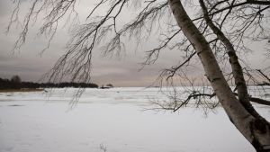 Talvinen maisema Lauttasaaren Kasinonrannassa Helsingissä 28. joulukuuta.