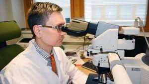 Patologian ylilääkäri Taneli Tani etsii mikroskoopilla syöpäsoluja imusolmukenäytteestä.