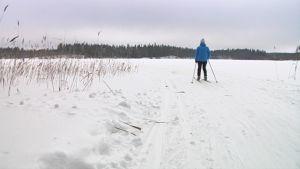 Hiihtäjä suuntaa jääladulle Mikkelissä.