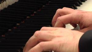 Pianistin kädet.