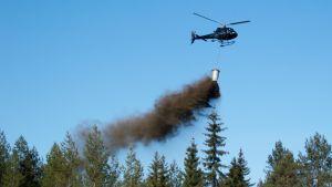 Juva, lannoitus, tuhka, tuhkalannoite, helikopteri, UPM